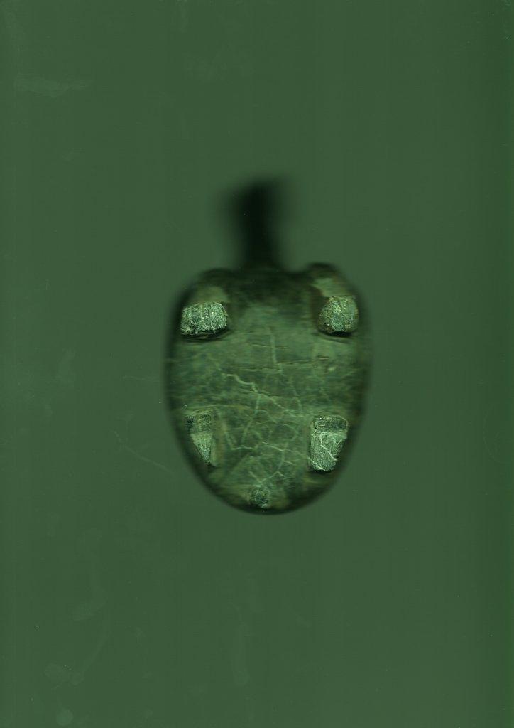 1-Vert.jpeg